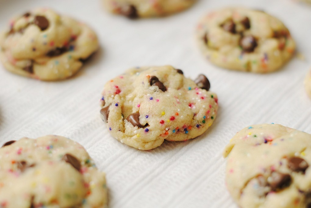 5 simple science experiments on cookie ingredients forumfinder Choice Image