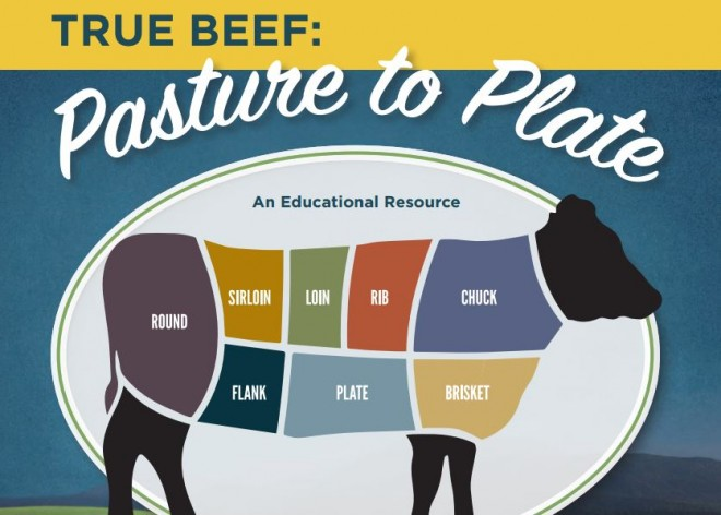 True Beef Lessons and DVD